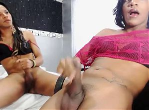Two trannies jerk off on web cam